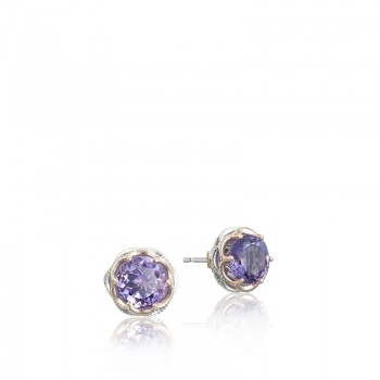 Crescent Crown Studs featuring Amethyst SE105P01
