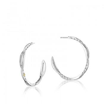 Crescent Curve Hoop Earrings