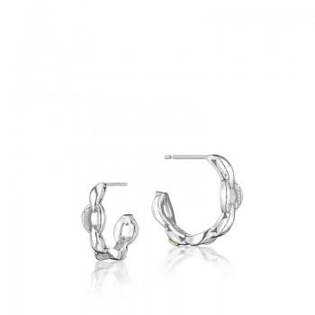 Mini Crescent Curve Earrings